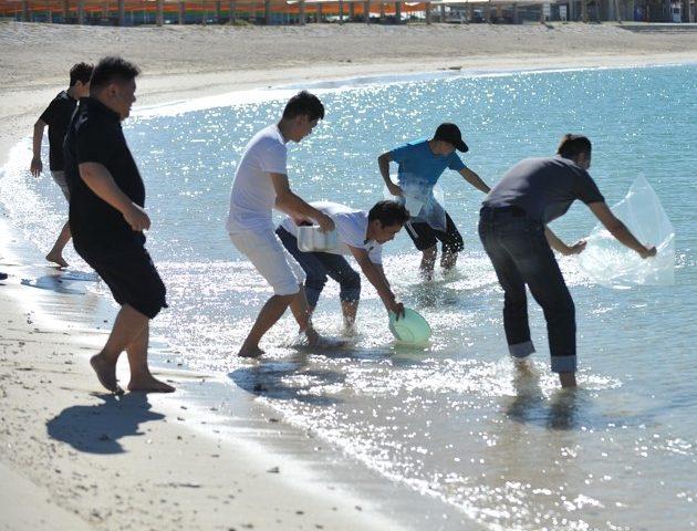 沖縄の海を最大限に感じるプログラム
